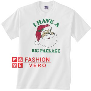 Santa I have a big package Christmas Unisex adult T shirt